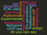 seq wordcloud 1